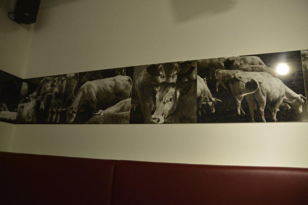 Bilder von Kühen im Burgermeester Amsterdam ;)